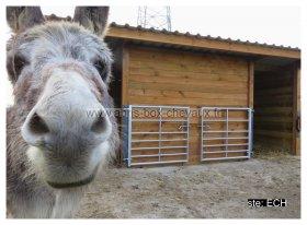 Le spécialiste des box et abris pour chevaux.